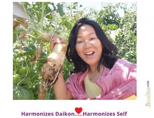 Harmonizes Daikon….Harmonizing Self!